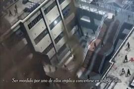 Videos sex animal gratuit